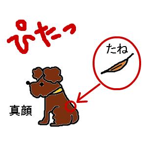 Cocolog_oekaki_2011_06_17_18_44